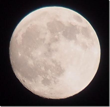 月 オリンパス E-PL5