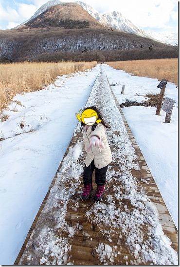 九重の雪原と子供
