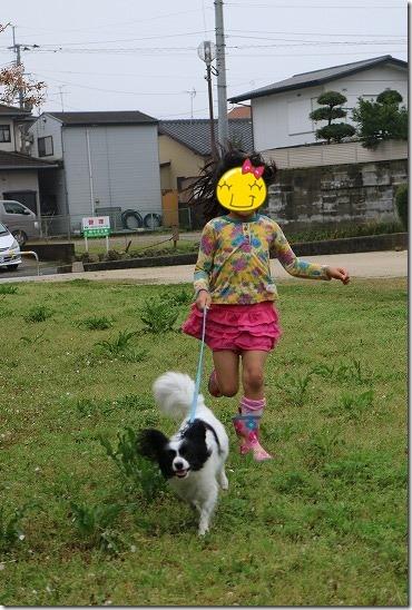 CANON EOS M3のAF性能 子供と犬でお試しレポート
