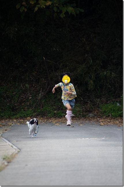 走る子供と犬