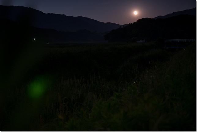 X-T1でホタルと月