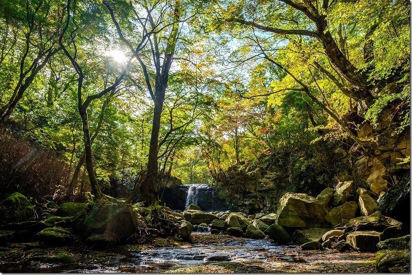 滝と木々をXF14mmで撮影